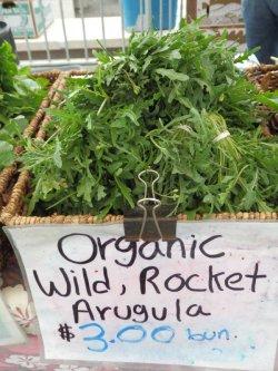 画像5: FRANCHI社-イタリア野菜の種【ルッコラセルバチカ・EXTRA】