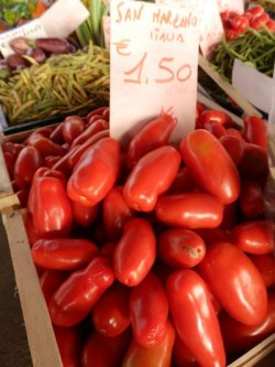画像2: FRANCHI社-イタリア野菜の種【イタリアントマト・サンマルツァーノ】