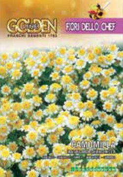 画像1: エディブルフラワー・カモミール-CAMOMILLA matricaria chamomilla