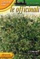 FRANCHI社-イタリアハーブの種【クミン】