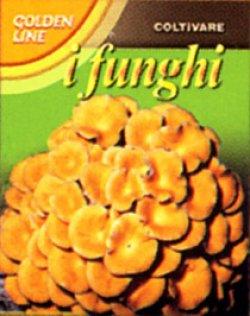 画像1: FUNGO DELL' ORO Golden Mushroom