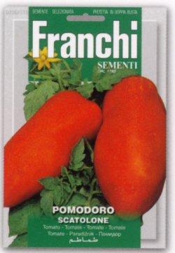 画像1: イタリアントマト・スカトローネ【固定種/支柱・必要】