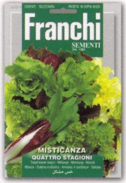 画像1: イタリアンメスクラン(ミックス種子)【固定種】