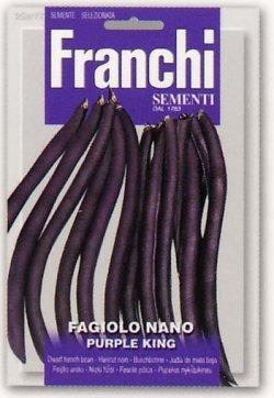 画像1: FRANCHI社-イタリア野菜の種【ツルなしインゲン・PURPLE KING】