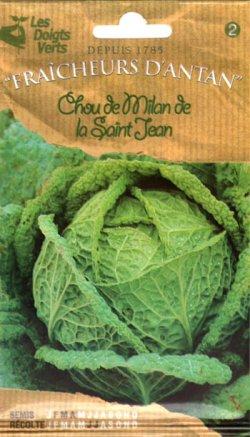 画像1: サボイキャベツ・MILAN De La St Jean