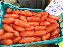 画像3: トマト・サンマルツァーノ3【固定種/支柱・必要】