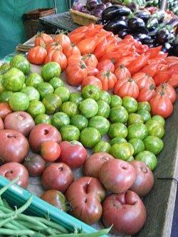 画像2: トマト・グリーンゼブラ【固定種/支柱・必要】