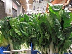 画像2: スイスチャード・bionda a costa argentata 2【固定種】