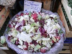 画像2: イタリアンメスクラン(ミックス種子)【固定種】