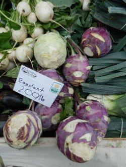 画像3: コールラビ・violet de Vienne【固定種】