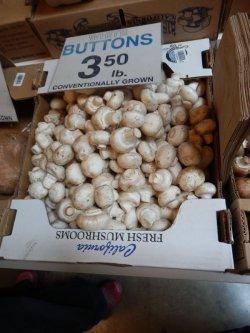 画像3: PRATAIORO Cultivated Button Mushrooms