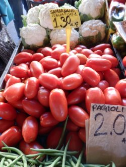 画像5: FRANCHI社-イタリア野菜の種【イタリアントマト・サンマルツァーノ】