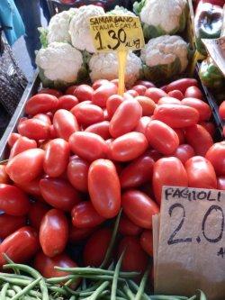 画像5: トマト・サンマルツァーノ3【固定種/支柱・必要】
