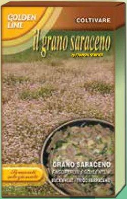 画像1: 蕎麦・サラセノ-GRANO SARACENO