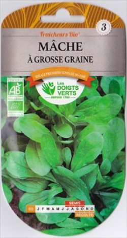 画像1: マーシュ・a Grosse Graine(オーガニック種子)【固定種】