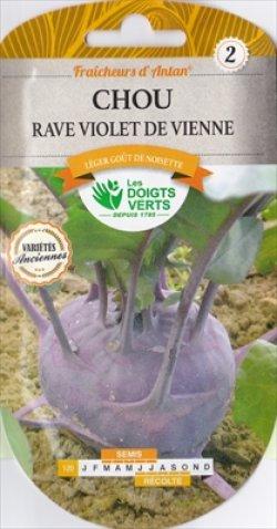 画像1: コールラビ・violet de Vienne【固定種】