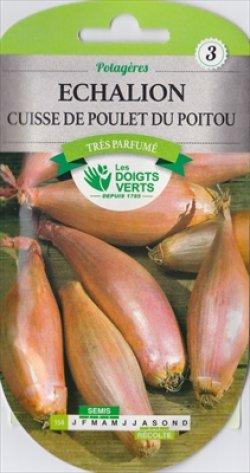 画像1: エシャロット・de Poulet du Poitou【固定種】