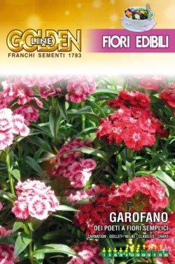 画像1: エディブルフラワー・ダイアンサス-GAROFANO del poeti a fiori semplici【固定種】