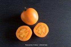 画像1: エアルームトマト・VALENCIA(オーガニック種子)【固定種/支柱・必要】