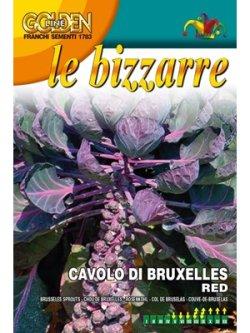 画像1: 芽キャベツ-ブリュッセルスプラウト・ROSSO