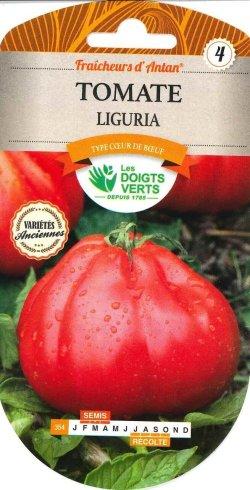 画像1: トマト・Liguria【固定種/支柱・必要】