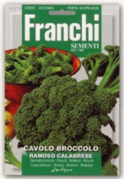 画像1: FRANCHI社-イタリア野菜の種【ブロッコリー・CALABRESE(早生種)】