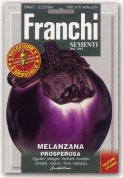 画像1: FRANCHI社-イタリア野菜の種【イタリアンナス・PROSPEROSA】
