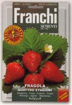 画像1: FRANCHI社-イタリア野菜の種【四季なりイチゴ】