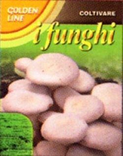画像1: PRATAIORO Cultivated Button Mushrooms