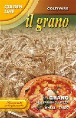 画像1: ピザ用小麦・GRANO PER FARINA DA PIZZA