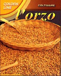 画像1: オルツォ大麦・ORZO