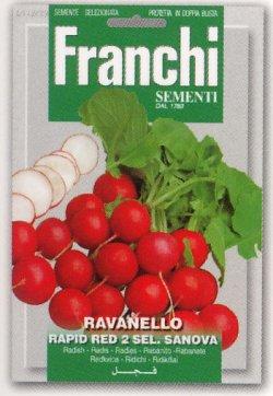 画像1: ラディッシュ・rapid red 2 sel.sanova【固定種】